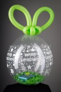 Eenvoudige gevulde ballon